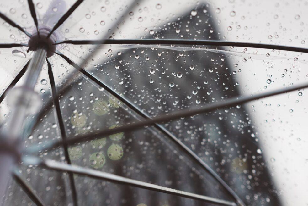 copertina poesia fiore piove lacrime